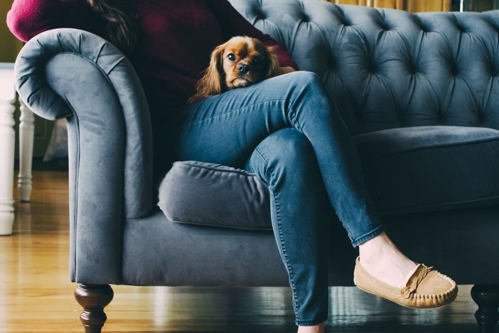 Woman sits on plush couch with cocker spaniel