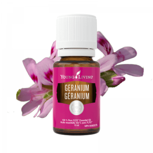 geranium essential oil bottle and flower